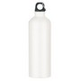 Aluminium Sports Bottle 750Ml With Carab
