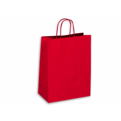 Picture of Kraft Paper Bag Coloured Large Includes