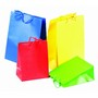 Matt Laminated Bag Large With Rope HandleBags/Paper