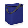 6 Bottle/12 Can Cooler Bag w/Carry Strap