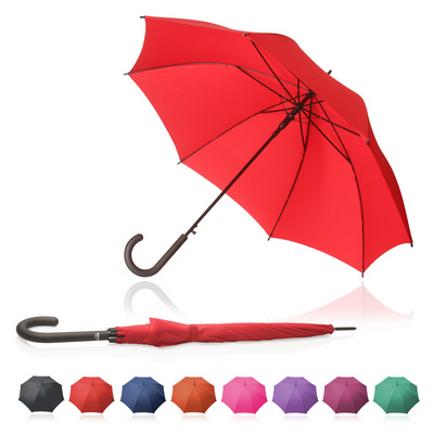 Picture of Shelta 61cm Umbrella