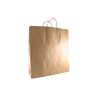 Picture of Large Standard Brown Kraft Paper Bag