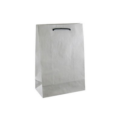 Picture of Junior Deluxe White Kraft Paper Bag