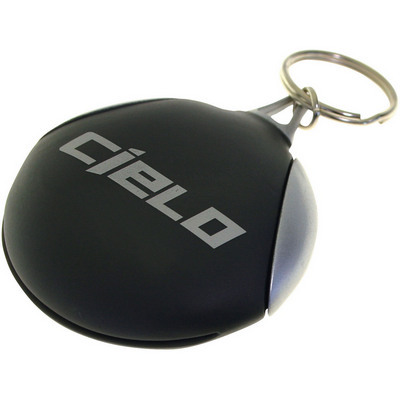Picture of Vision keyring