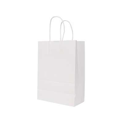 Picture of Twisted Handle Kraft Paper Bag(220x280x1
