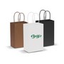 Paper Carry Bag - Small