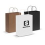 Paper Carry Bag - Large