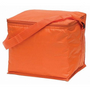 Basic 6 Pack Cooler Orange