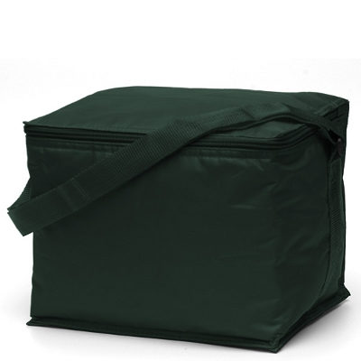 Picture of Basic 6 pack Cooler Green