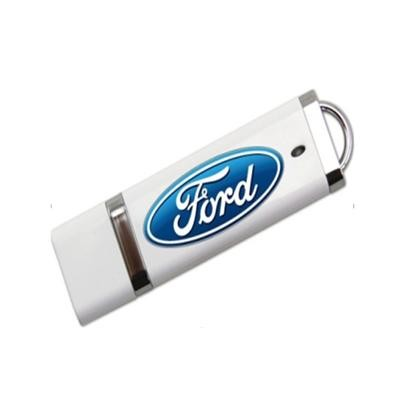 Picture of Plastic Promotional Usb