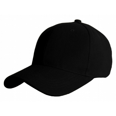 Picture of Lion Baseball Cap