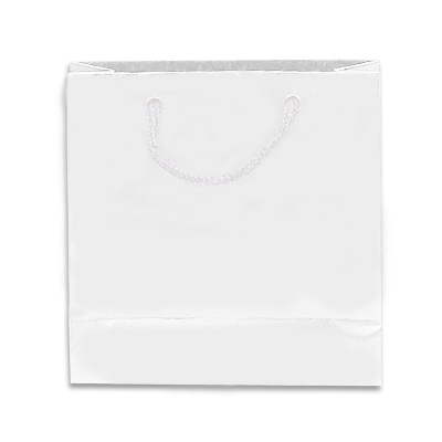 Picture of Gloss Laminated Bag Small With Rope Hand