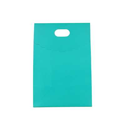 Picture of Diecut Handle Bag with Flap(50x220x100mm