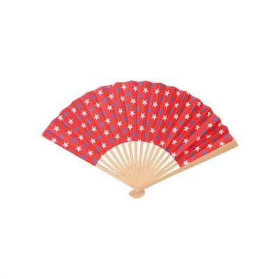Picture of Chinese Foldable Fan