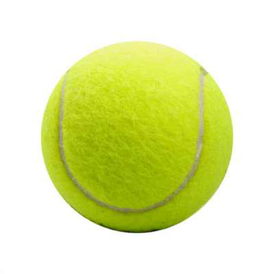 Picture of Dog Tennis