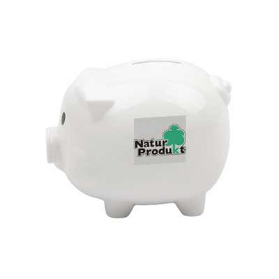 Picture of Piggy Coin Bank