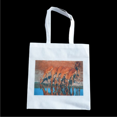 Picture of Tote Bag With No Gusset (Printed With Fu