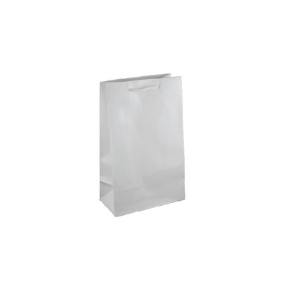 Picture of Small White Gloss Laminated Paper Bag Pr