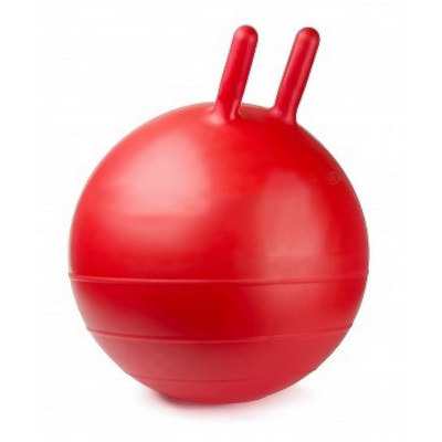 Picture of FBAL01 Fitness Ball