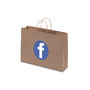 Kraft Paper Bag Brown Landscape Includes