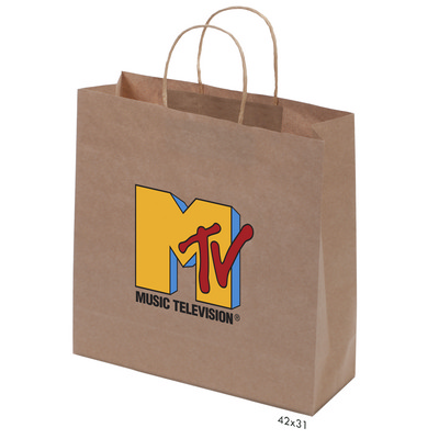 Picture of Kraft Paper Bag Brown Large Includes Twi