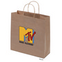 Kraft Paper Bag Brown Large Includes Twi
