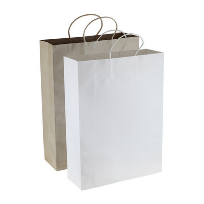 Picture of Paper Kraft Shopping Bag