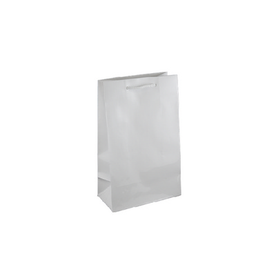 Picture of Small White Gloss Laminated Paper Bag