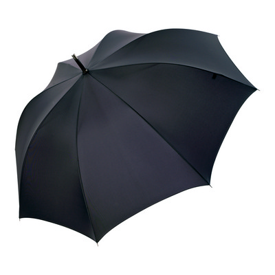 Picture of Curve Umbrella