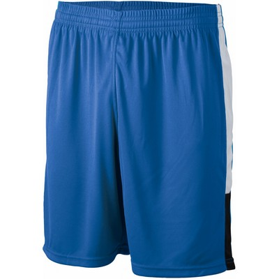Picture of James & Nicholson Team Shorts