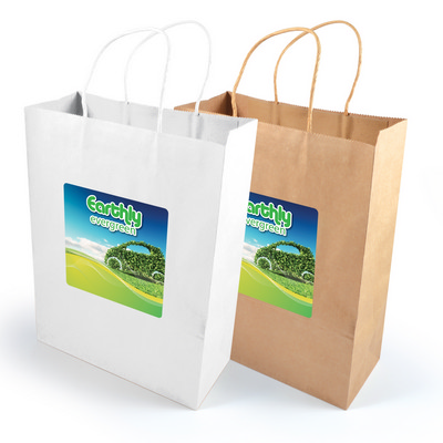 Picture of Express Paper Bag