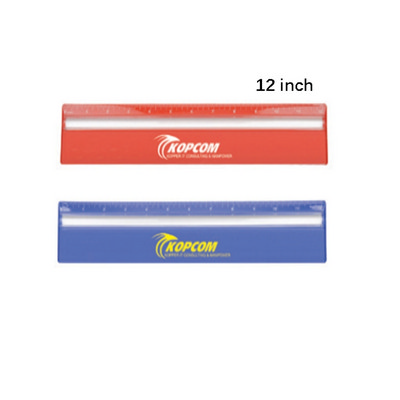 Picture of Ds256Tl 30Cm Ruler With Color  And Magni
