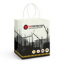 Medium Paper Carry Bag  Full Colour