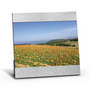 5in X 7in Aluminum Photo Frame