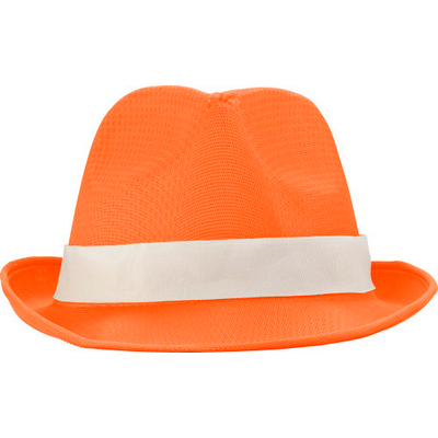Picture of Polyester hat