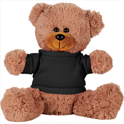 Picture of 8     Sitting Plush Bear with Shirt
