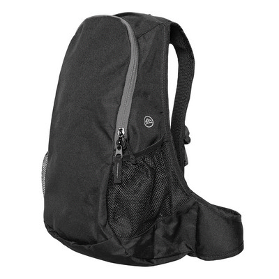 Picture of Beetle Day Pack