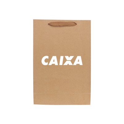 Picture of Small Vertical Paper Bag with Rope Handl