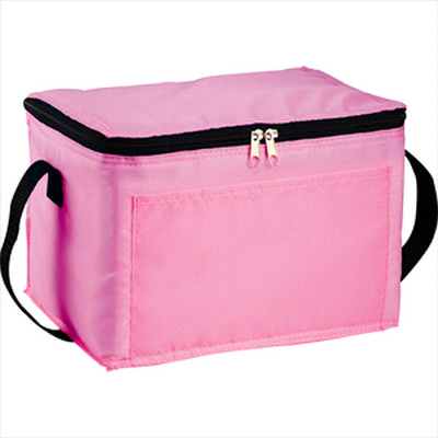 Picture of Spectrum Budget 6 Can Lunch Cooler