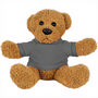 6   Plush Rag Bear with Shirt
