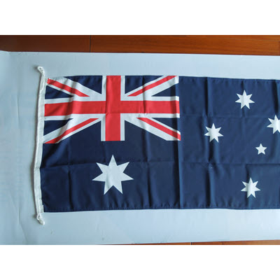 Picture of 130 GSM Shiny Poly Flag 2500mmx1250mm
