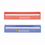 20cm Ruler with Colour and Magnifying