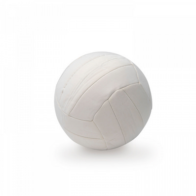 Picture of Neoprene Sports ball