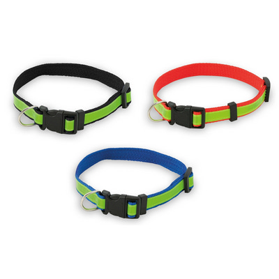 Picture of Pet Collar Muttley