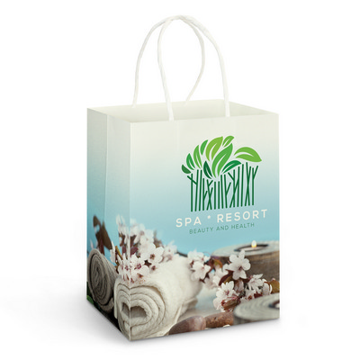 Picture of Large Paper Carry Bag - Full Colour