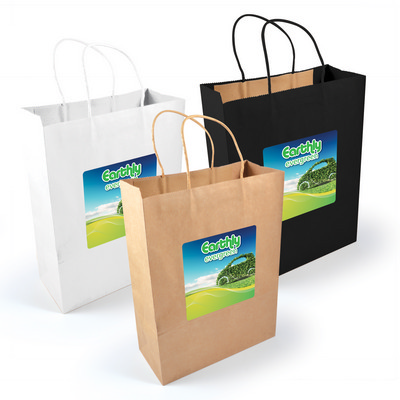 Picture of Express Paper Bag Large