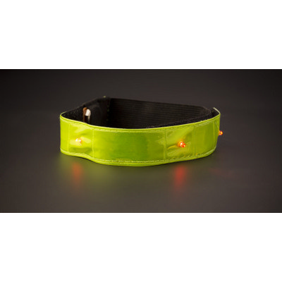 Picture of Nylon (500D) and PVC reflective strap wi