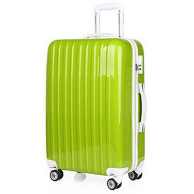 Picture of Adult Luggage Trolley Suitcase