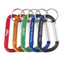 Carabiner With Keyring