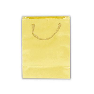 Picture of Gloss Laminated Bag Extra Large With Rop